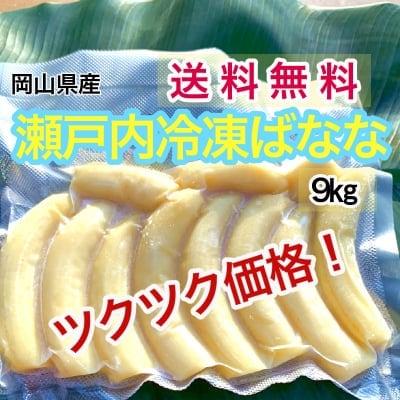 【国産】瀬戸内ばなな【農薬不使用】冷凍バナナ9㎏(写真は500g)