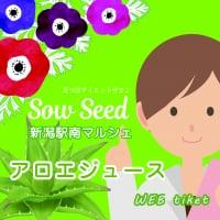 11月15日新潟駅南マルシェ-アロエジュース5400円チケット