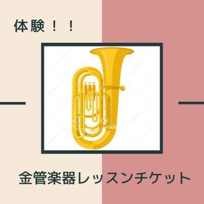 金管楽器個人レッスン(テューバ・ユーフォニアム)