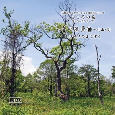 自然音CD 〜音の風景〜⑩[山里-1]《ヤブサメのさえずり》