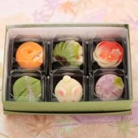 (クール送料込み)季節の上生菓子 今なら、季節の和菓子をおまけでお付けしています。大変お得です!