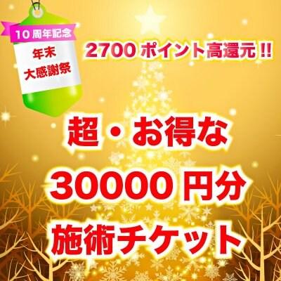 【10周年感謝祭】【10枚限定】2700pt高還元!! 超・お得な30000円分の施術チケット(販売期限2020年12月20日)