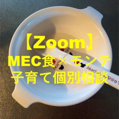 【Zoom個別相談】0歳〜3歳のママ向けの個別相談〜MECで補完食〜