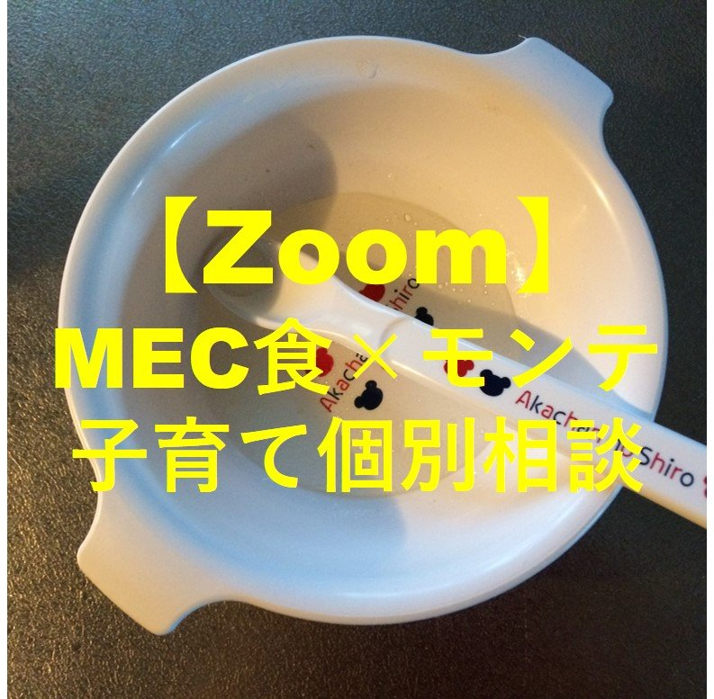 【Zoom個別相談】0歳〜3歳のママ向けの個別相談〜MECで補完食〜のイメージその1