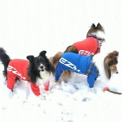 EZYDOG 犬用ロングスリーブラッシュガード〔サイズ:XL〕【全二色】