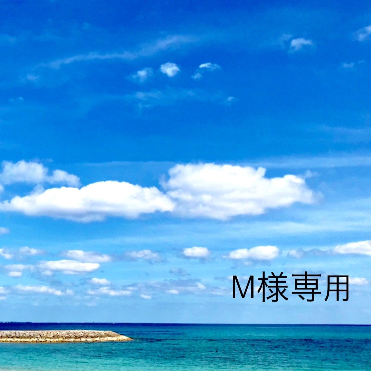 M様専用のイメージその1