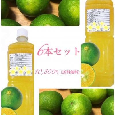 S様専用 沖縄県産シークヮーサー果汁100%冷凍非加熱1kg 6本セット