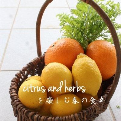 3、4月のクッキング&テーブルコーディネートレッスン 「シトラス&ハーブを楽しむ春の食卓」