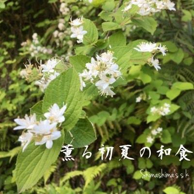 5、6月のクッキング&テーブルコーディネートレッスン 「薫る初夏の和食」梅と香味野菜の料理