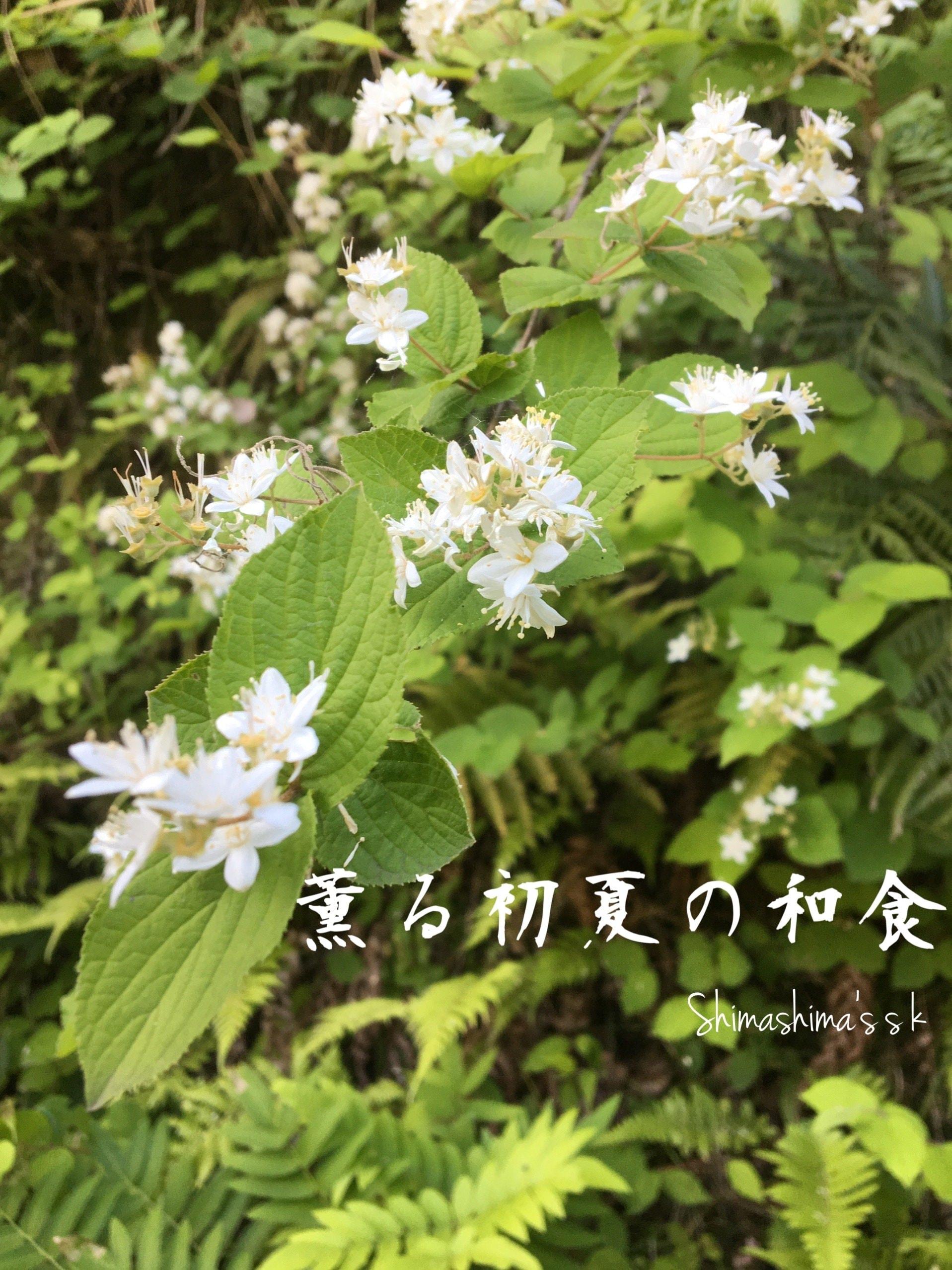 5、6月のクッキング&テーブルコーディネートレッスン 「薫る初夏の和食」梅と香味野菜の料理のイメージその1