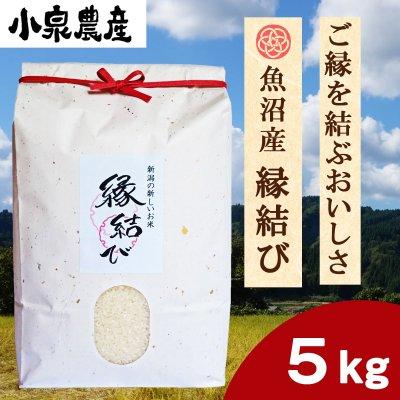 縁結び|白米【5kg】