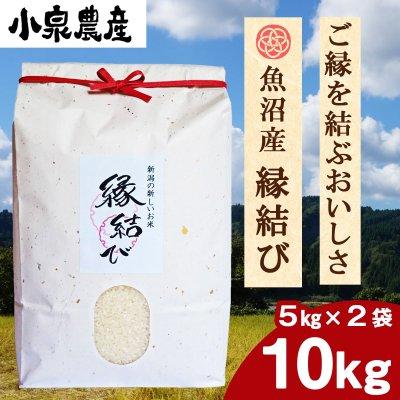 先着3名様限定☆定期便☆縁結び|白米【10kg】(5kg×2)