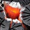 【自宅で本格炭火焼き鳥】岩手切炭と焼き鳥、七輪(中)セット