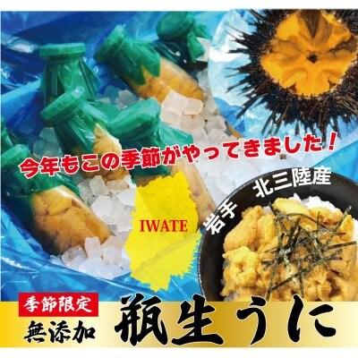 【初夏限定】岩手県産瓶生うにと殻付きホタテ3枚セット