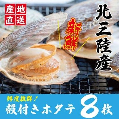 【北三陸産】殻付きホタテ8枚セット