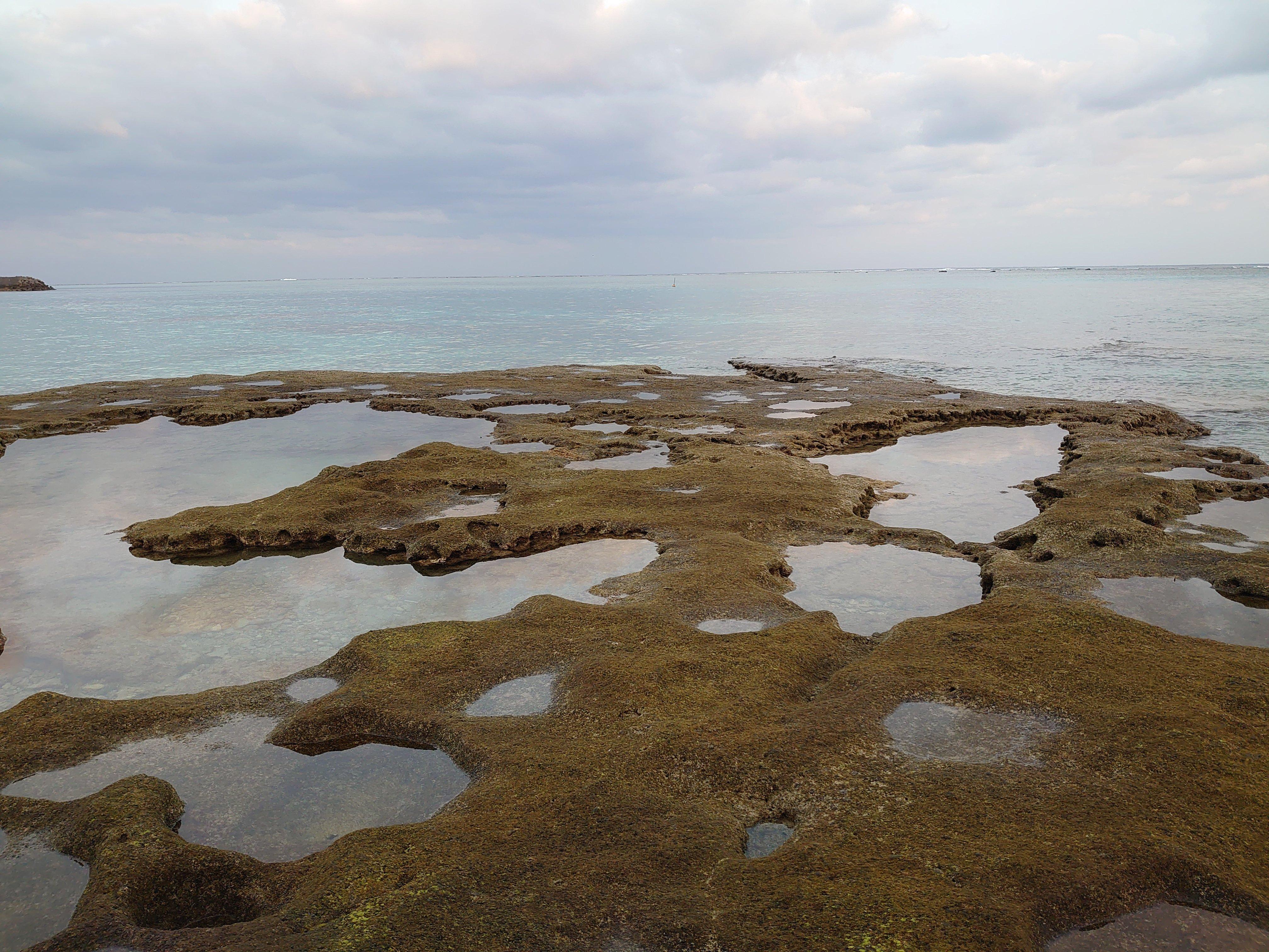 奄美群島認定エコツアーガイドがご案内する与論島内巡りツアー「午後コース」【現地決済のみ】のイメージその3