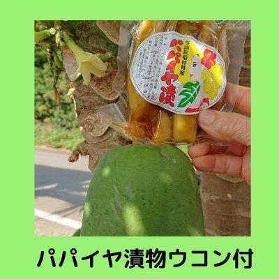 与論島のお土産! 民俗村特製 健康食品「パパイヤ」の漬物(ウコン漬け) 送...