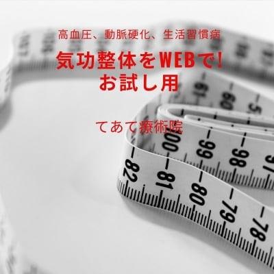 気功整体をWebで! 高血圧、動脈硬化など生活習慣病用 気功整体お試し60分