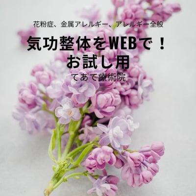 気功整体をWebで! 花粉症、アレルギー全般用 気功整体お試し60分