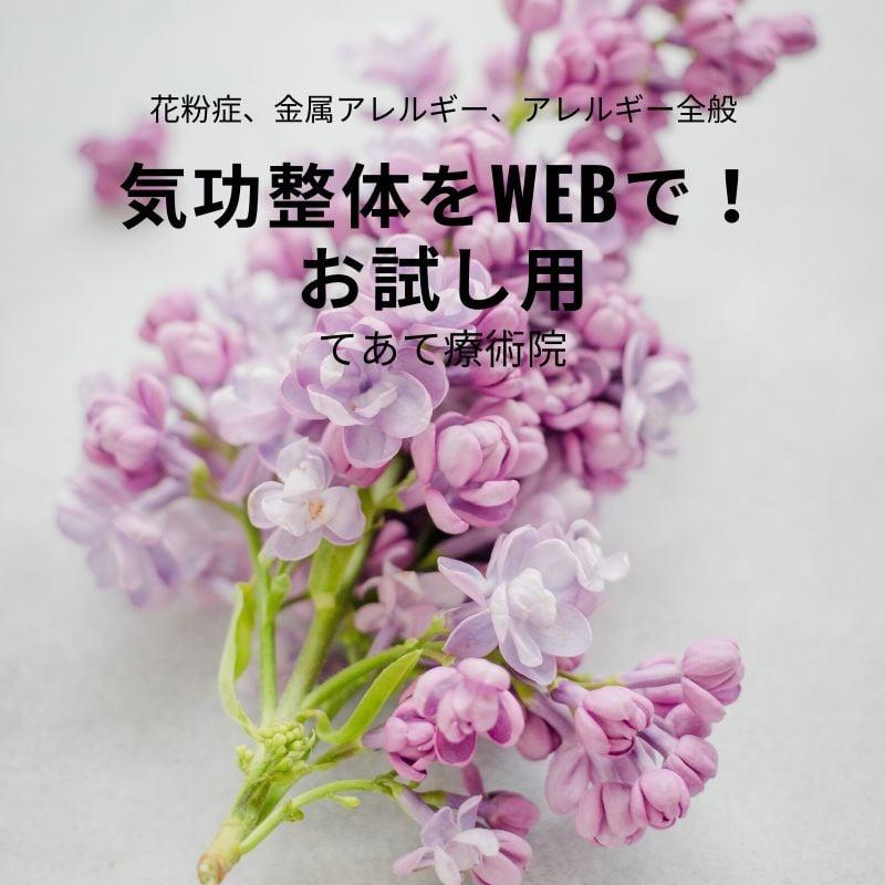 気功整体をWebで! 花粉症、アレルギー全般用 気功整体お試し60分のイメージその1