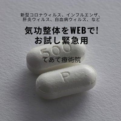 気功整体をWebで! 新型コロナウイルス、インフルエンザ等 緊急用気功整体お試し60分