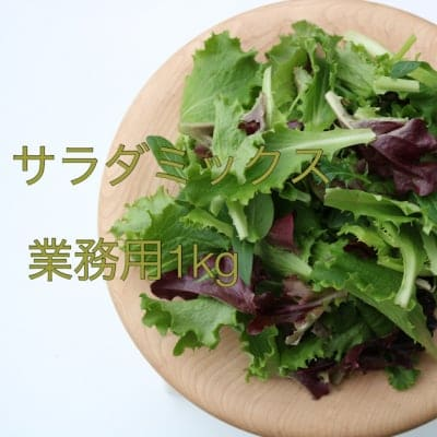 丹波野菜サラダミックス1Kg:クール便発送