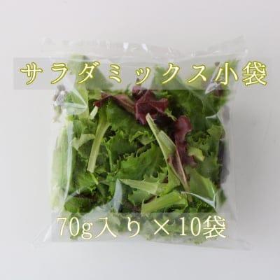 丹波野菜サラダミックス・72g×10パック