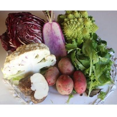 TAMBANIC.旬の野菜セット80サイズ