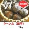 【自然栽培ターンム(田芋) 】1kg(冷凍)