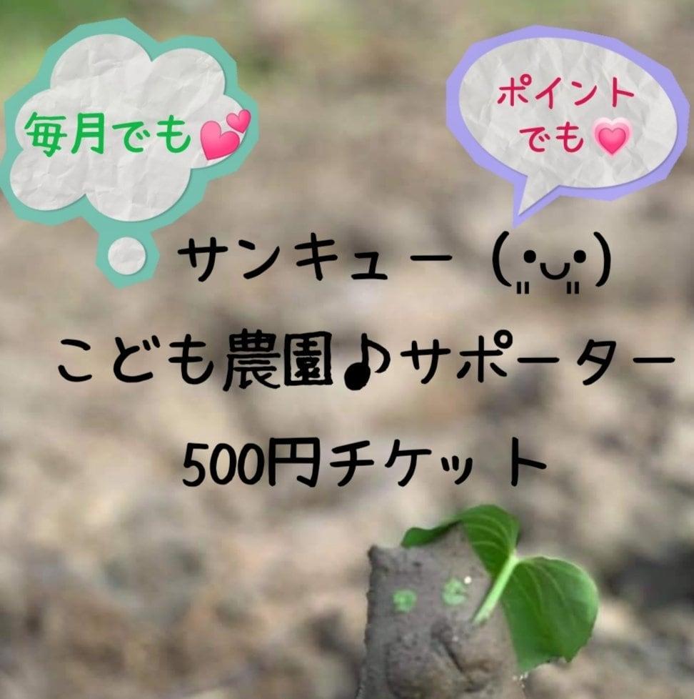 【毎月サポートお願いします!!】こども農園サポーター応援500円チケットのイメージその1