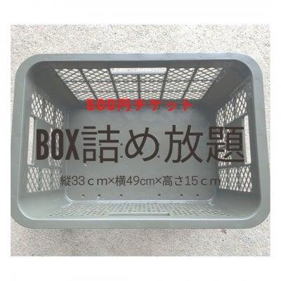 Sサイズ BOX詰め放題チケット500円