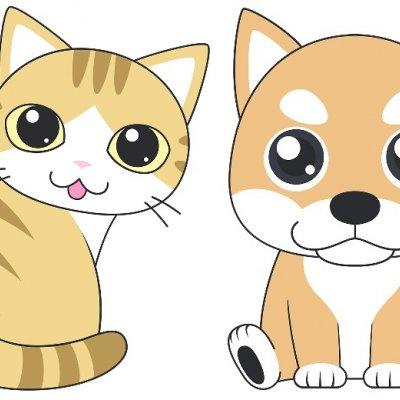 【対面・ZOOM選択可】ペットちゃんの気持ちが知りたい!アニマルコミュニケーションで気持ちを伝え合おう♥