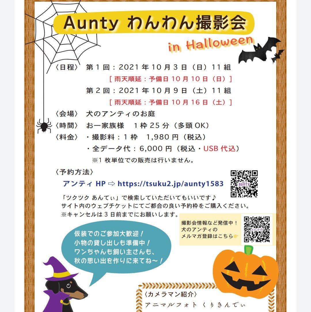 14,Aunty わんわん撮影会 in Halloween 10月9日:11時枠のイメージその3