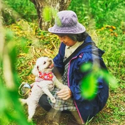 5,Aunty わんわん撮影会 in Halloween 10月3日:12時枠