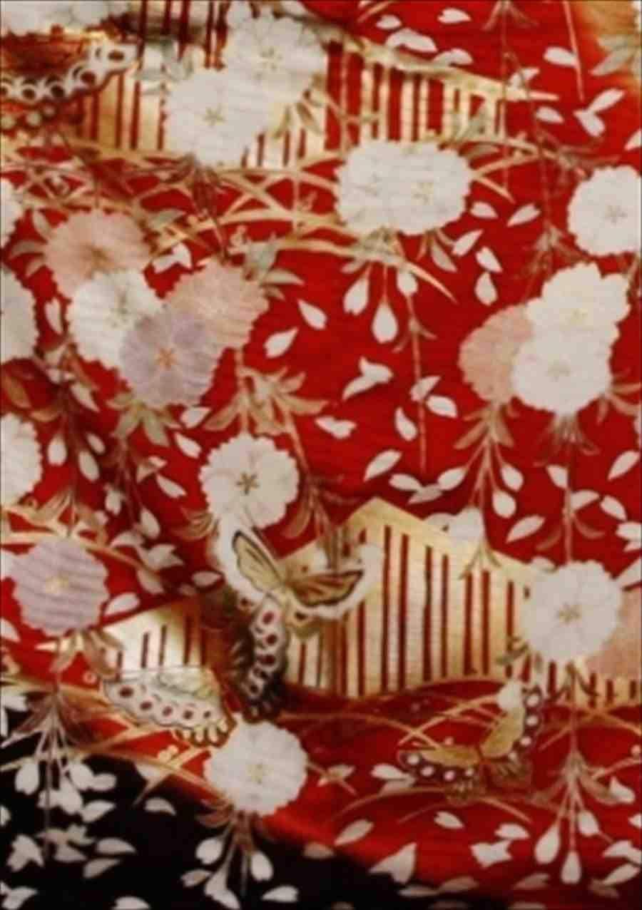 中振/金茶  蝶に桜 766(正)袖丈108 2338-020のイメージその2