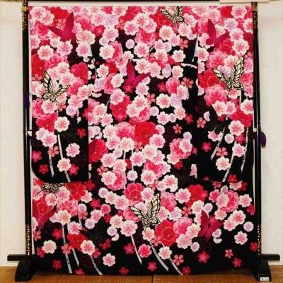 中振/黒地ピンク桜に蝶(化)泉友彩 袖108裄69 2320-050