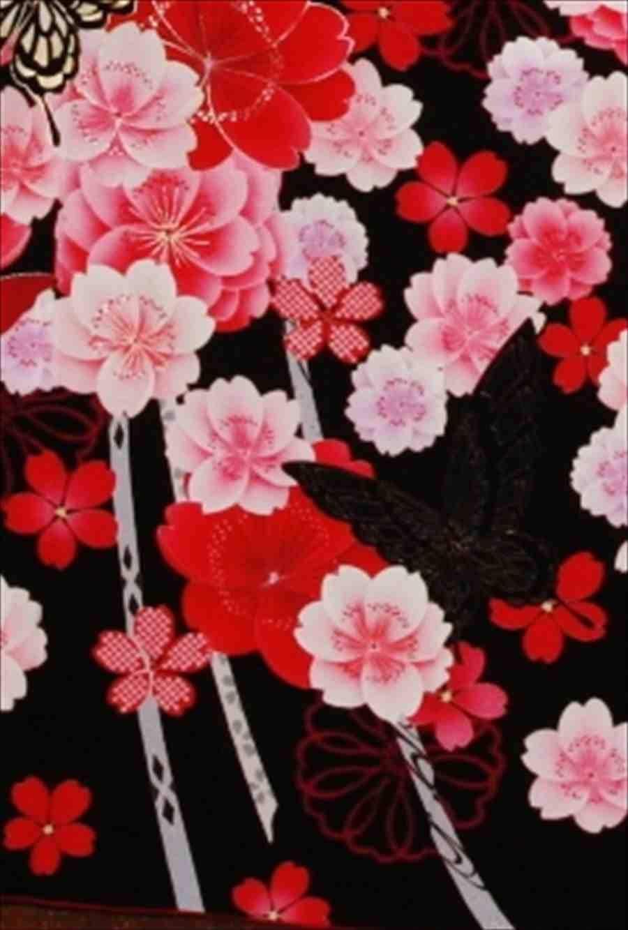 中振/黒地ピンク桜に蝶(化)泉友彩 袖108裄69 2320-050のイメージその2