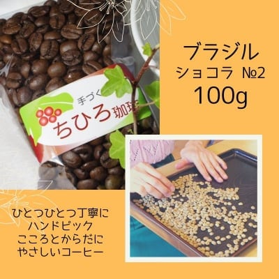 【ちひろ珈琲の自家焙煎珈琲豆】ブラジルショコラ№2 中深煎り 100g