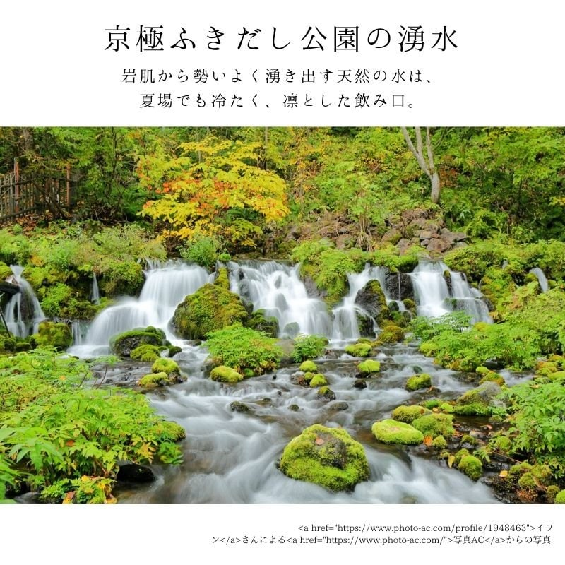 【店頭販売用】北海道 羊蹄山の湧水で抽出した【ちひろ珈琲のボトルコーヒー】のイメージその3