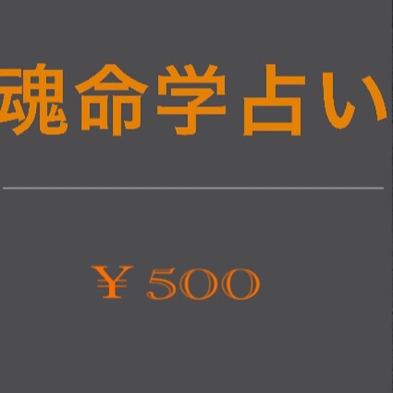 魂命学鑑定¥500のイメージその3