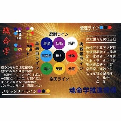魂命学鑑定¥500