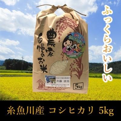 【5Kg】新潟県糸魚川産コシヒカリ【店頭販売専用商品】