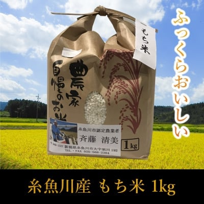 【1Kg】新潟県糸魚川産もち米【店頭販売専用商品】