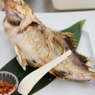 糸魚川では祝い事には欠かせないお魚☆ 清海塩焼き3尾 地方発送セット