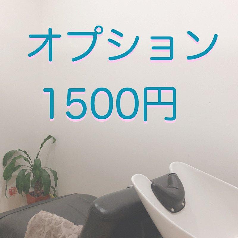 オプション1500円のイメージその1