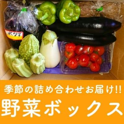 【1日限定3セット】毎日違う季節の詰め合わせ!! 野菜ボックス *関東、中部、東北3県 配送代込み2400円*