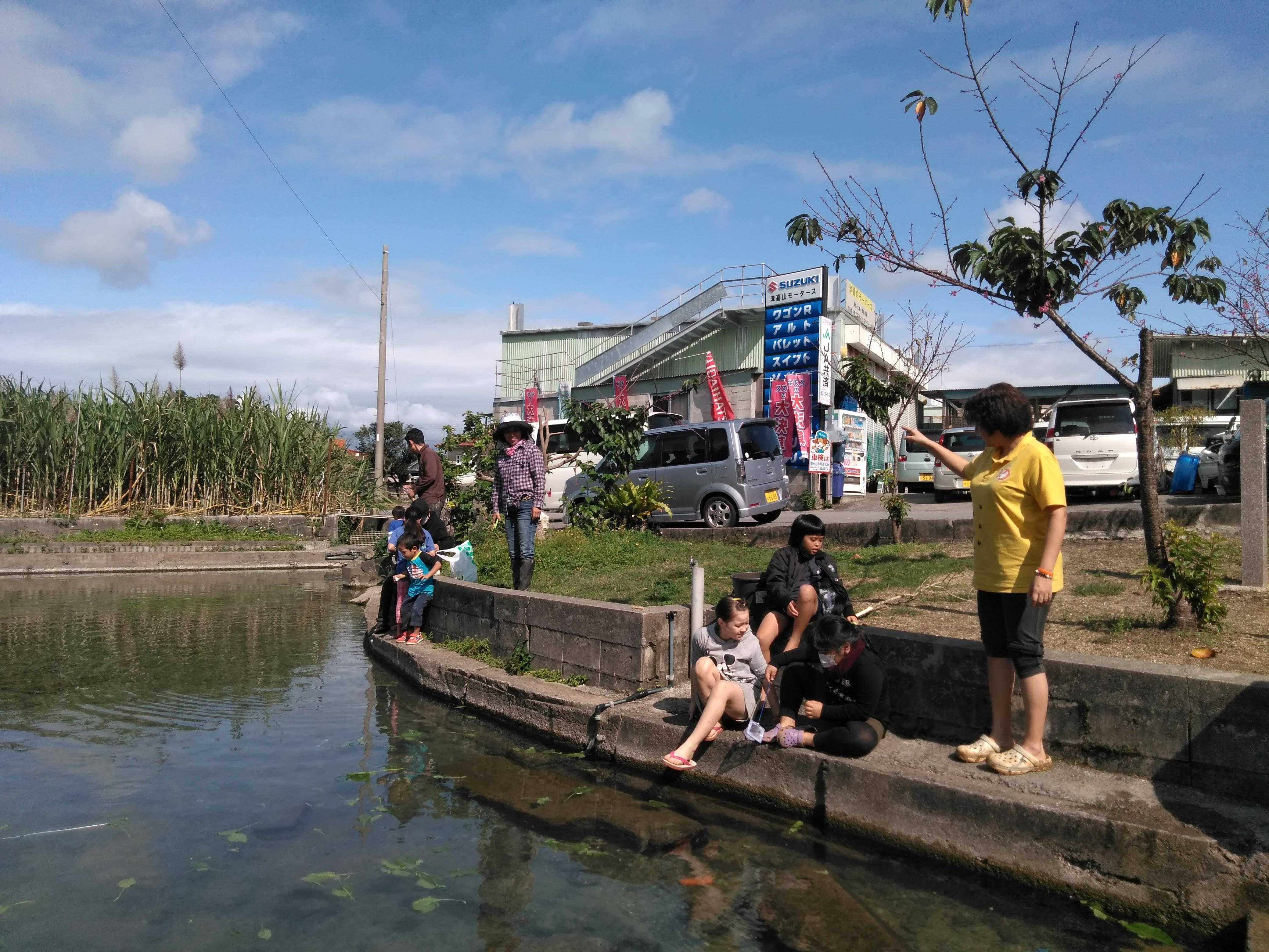 農業自然体験【沖縄】大人1人のイメージその2