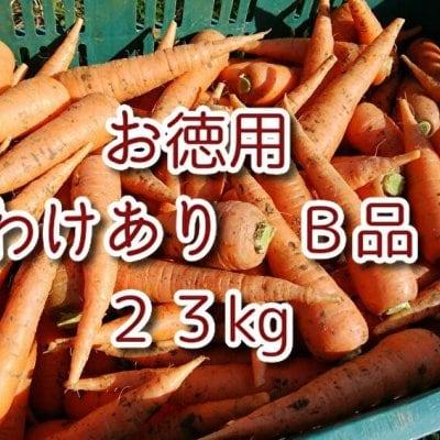 自然栽培/無農薬人参 【お徳用 ワケあり B品】23kg