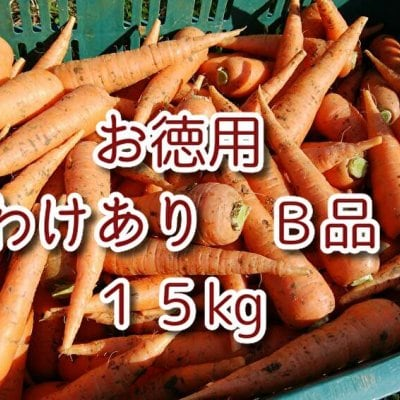 自然栽培/無農薬人参 【お徳用 ワケあり B品】15kg