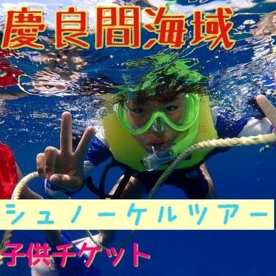 沖縄慶良間半日シュノーケルツアー